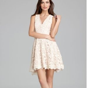 French connection loving crochet lace dress